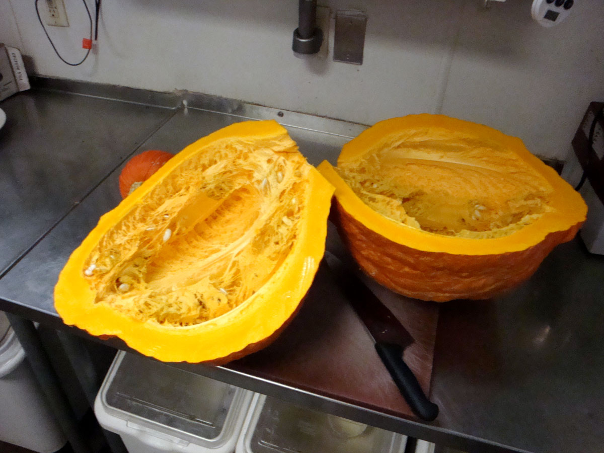 Boston Marrow Squash, cross-section