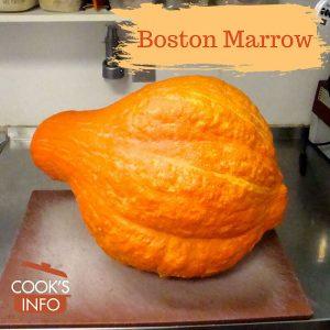 Boston Marrow Squash