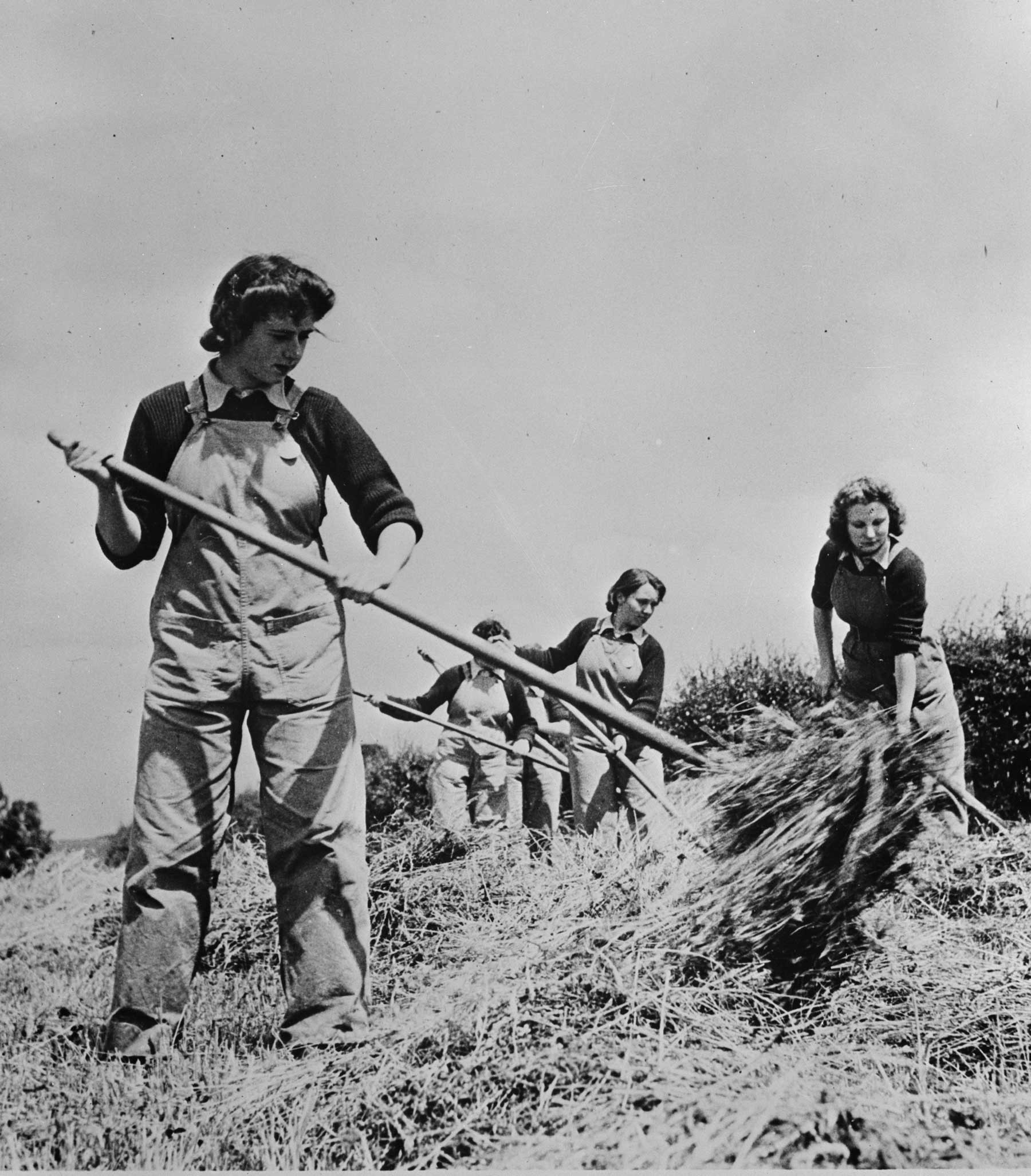 British Women's Land Army helping to harvest hay