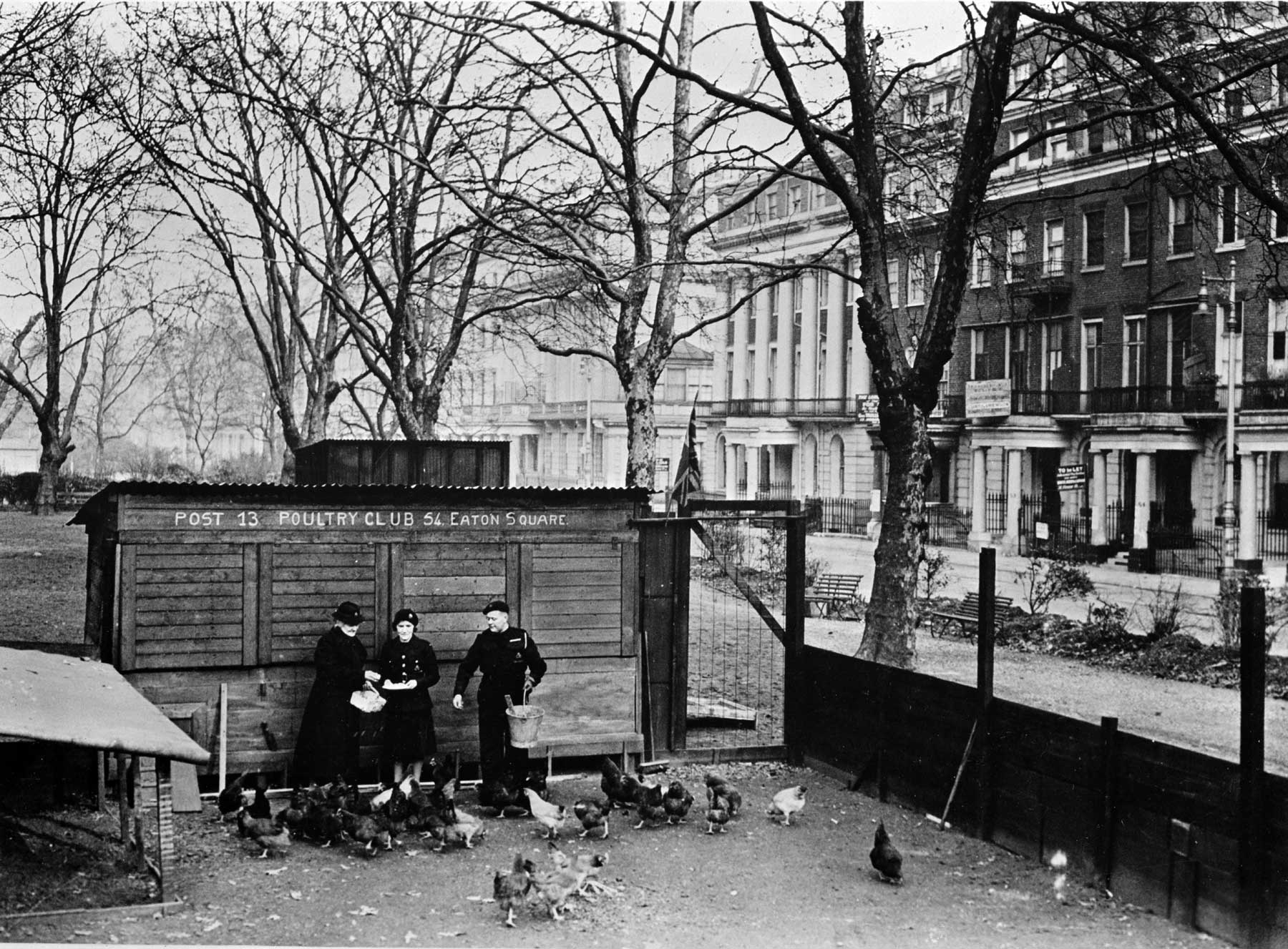 Poultry club in Eaton Square, London