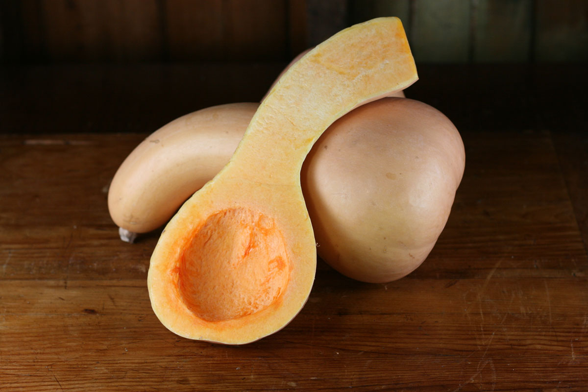Butternut squash showing seed cavity