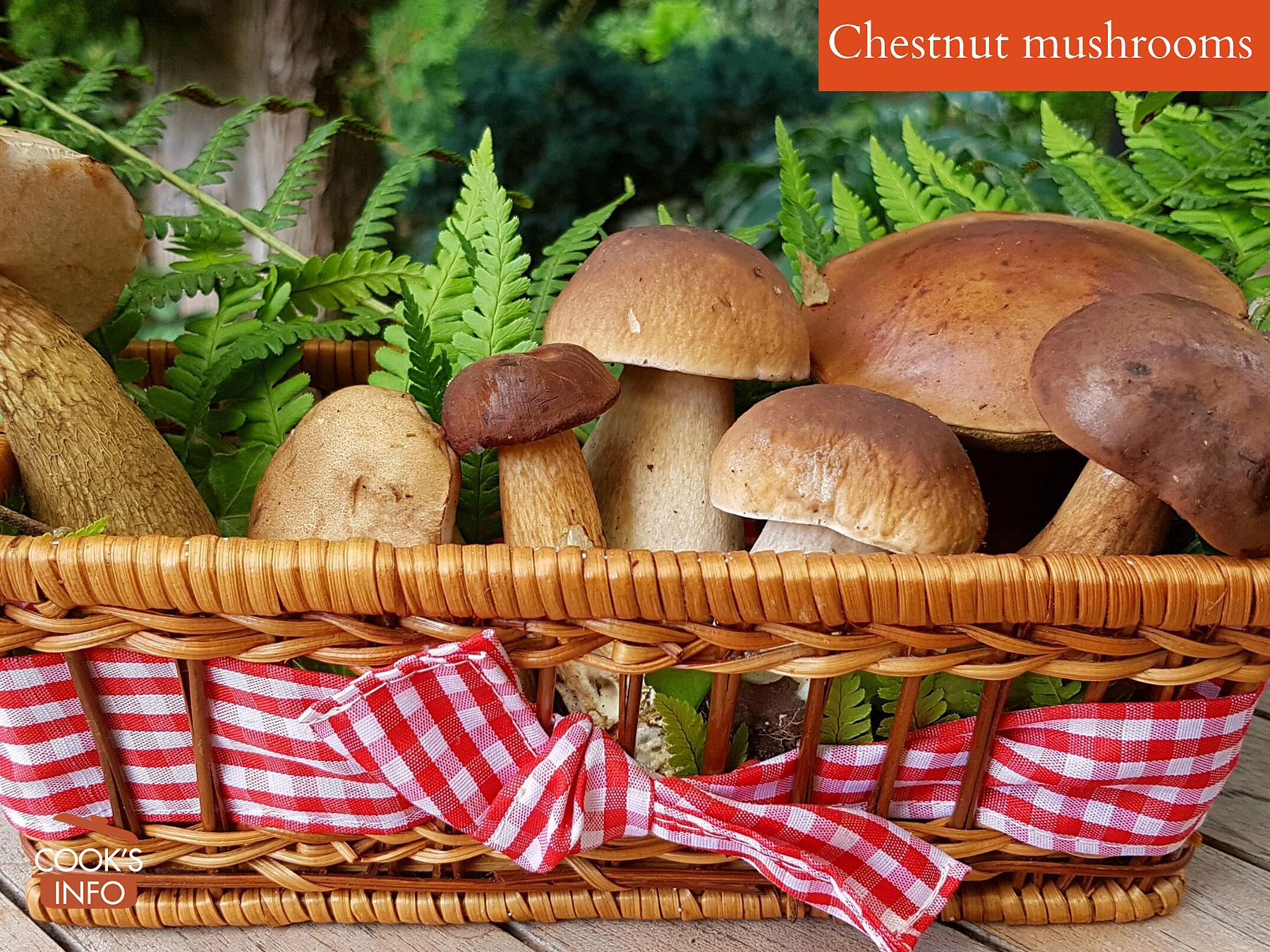 Chestnut mushrooms
