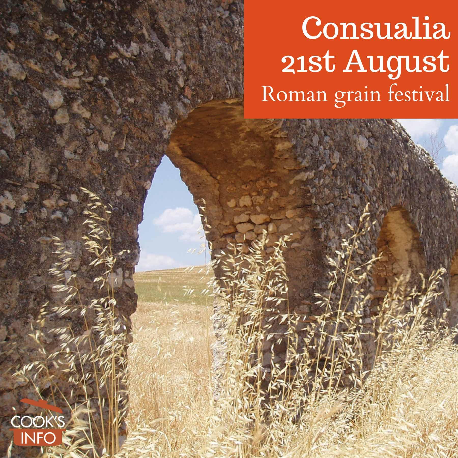 An ancient Roman aqueduct in a grain field near Rome