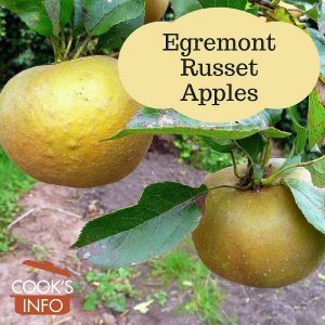 Egremont Russet Apple