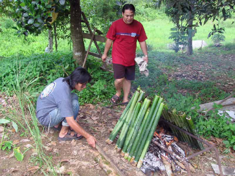 Trying to get the lemang to cook