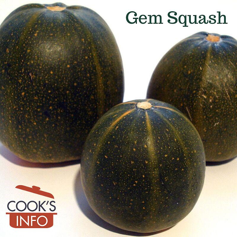 Gem Squash (the summer squash kind)