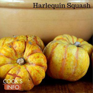 Harlequin Squash