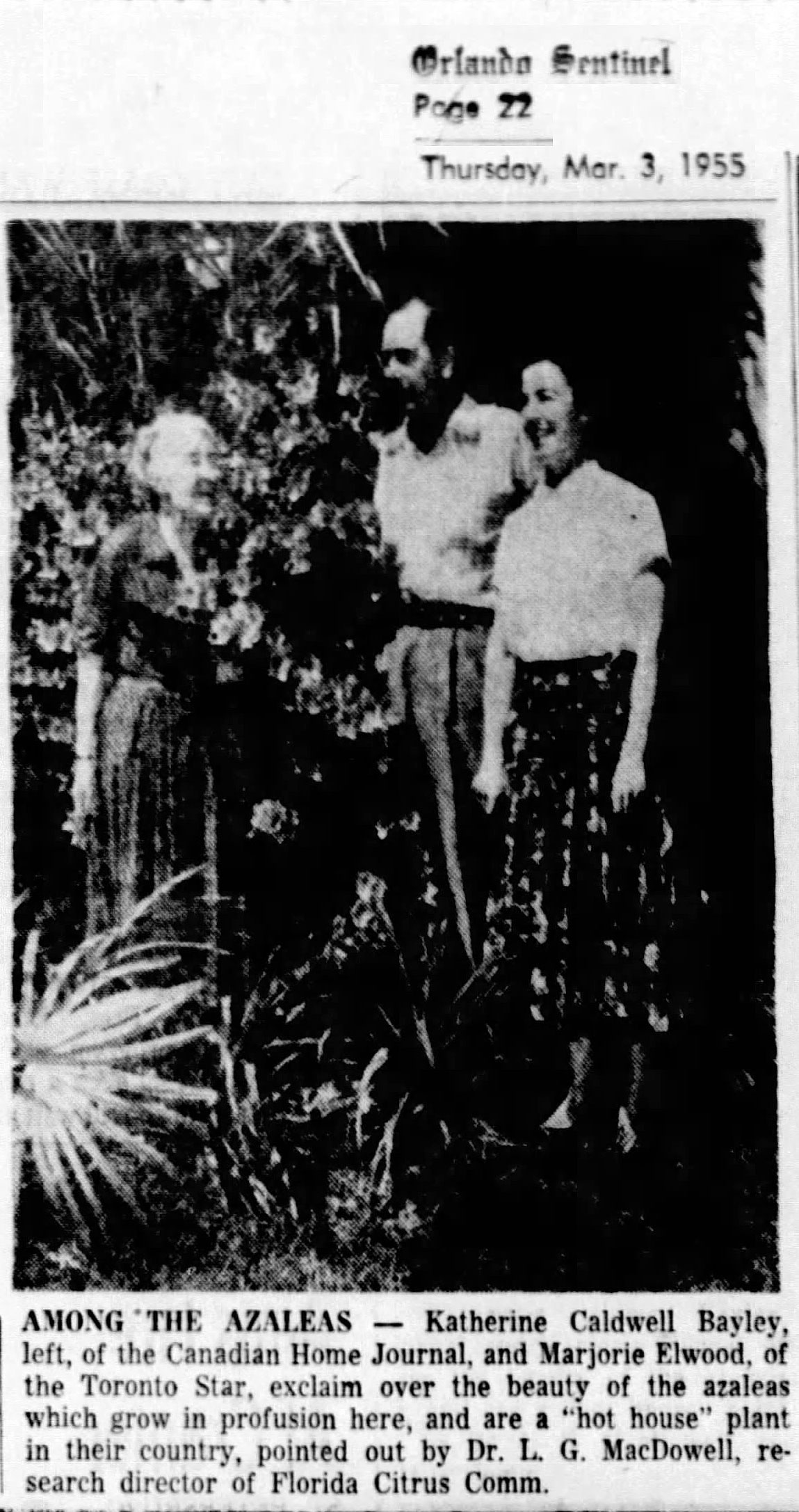 Katherine Caldwell Bayley in Florida, 1955