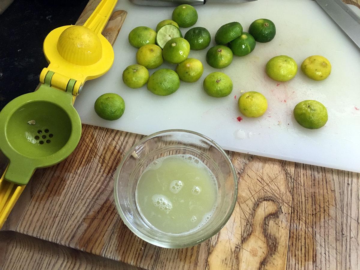 Plastic lime squeezer