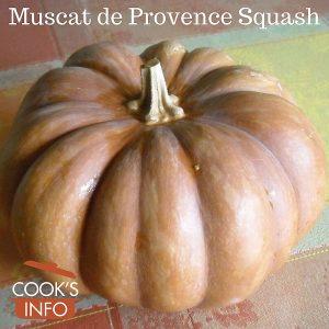 Muscat de Provence Squash