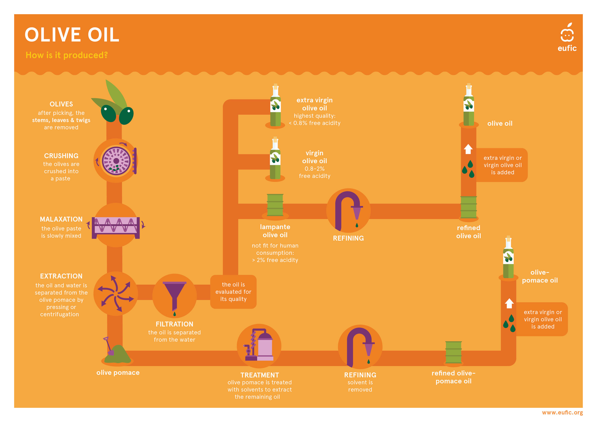 Olive oil production flow chart
