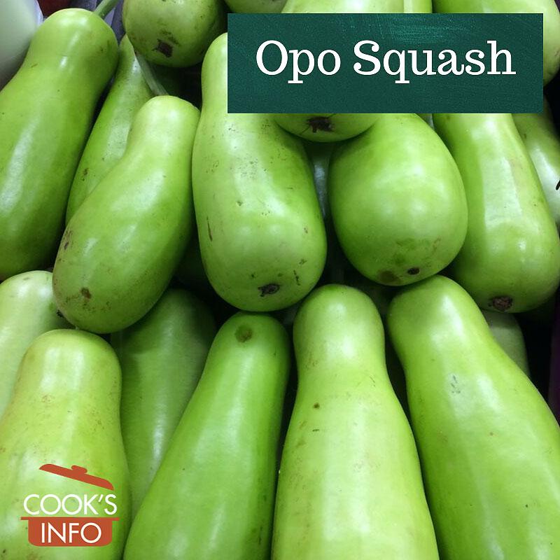 Opo Squash