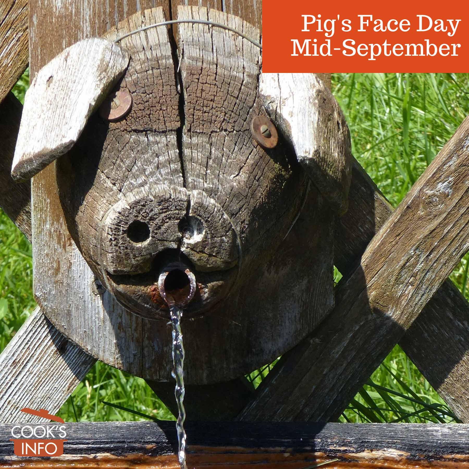 Pig's Head Water Trough