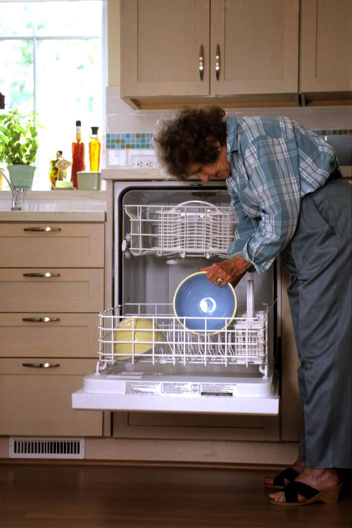 Accessible dishwashers
