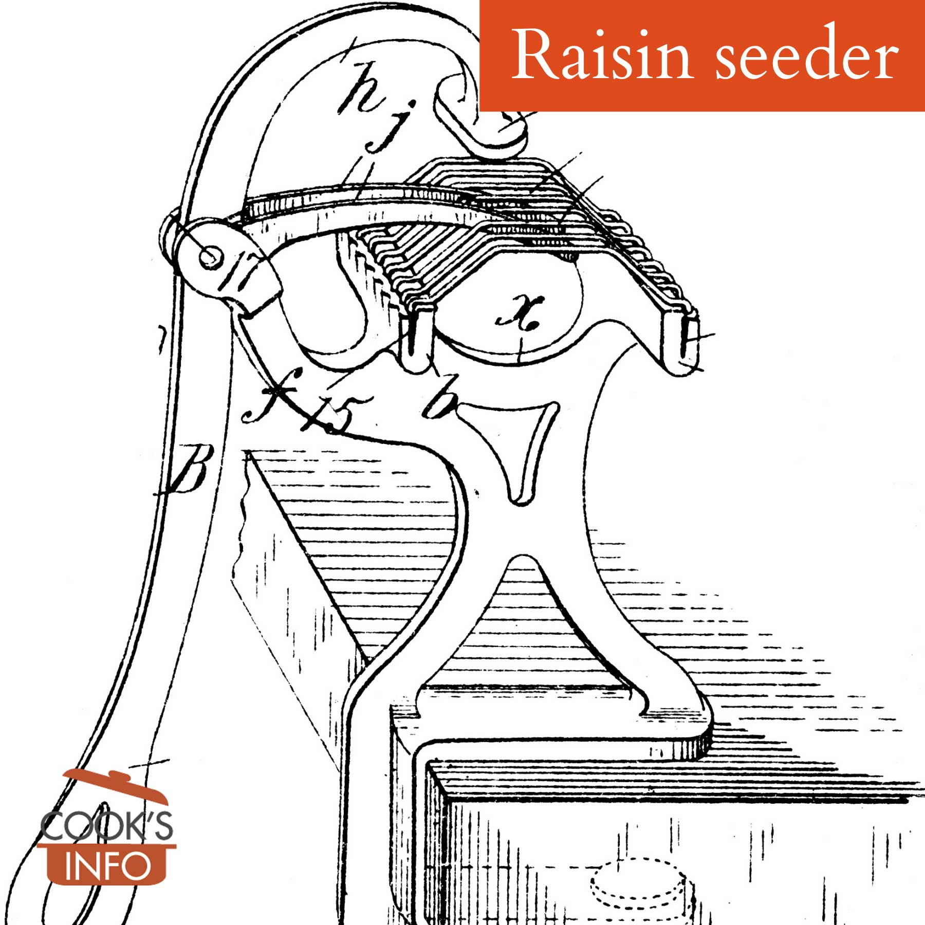 Raisin seeder