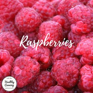 Raspberries close-up