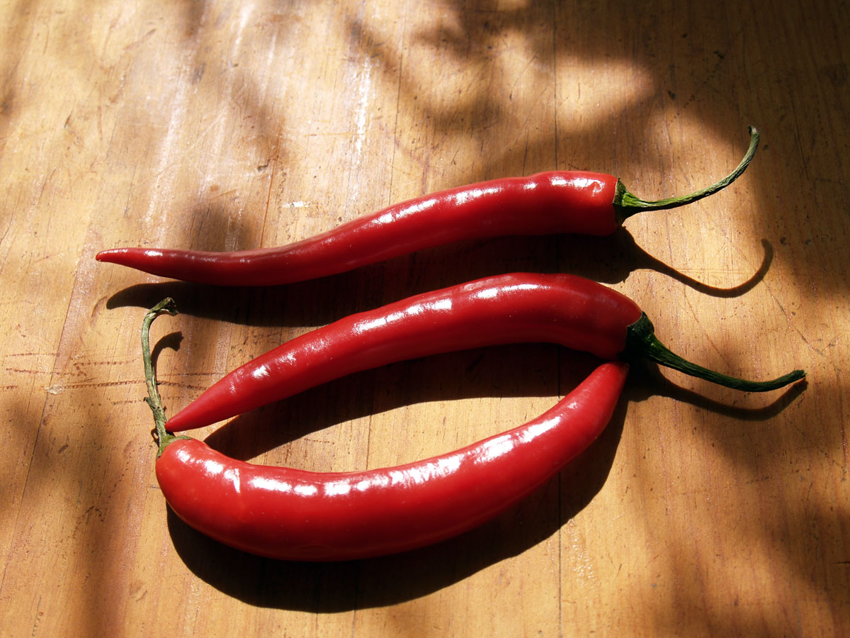 Generic Red Chile