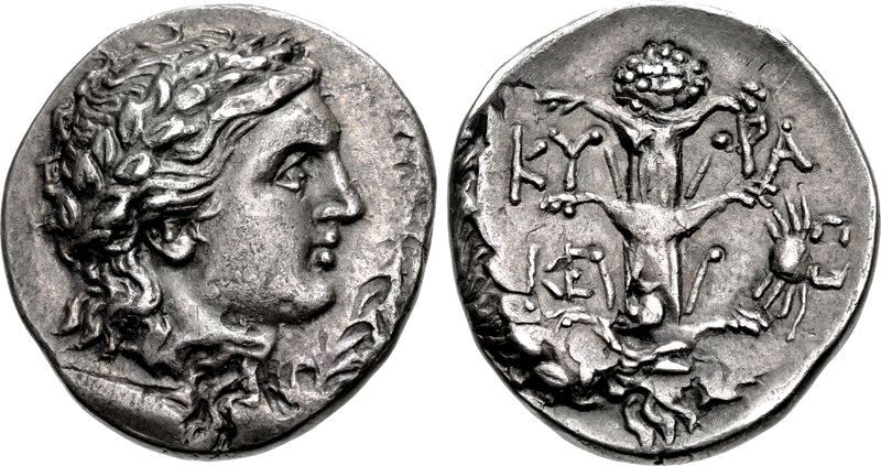 Silphium on a coin from around 300 to 275 BC