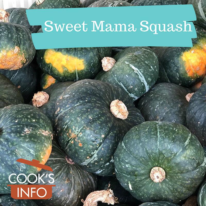 Sweet Mama Squash