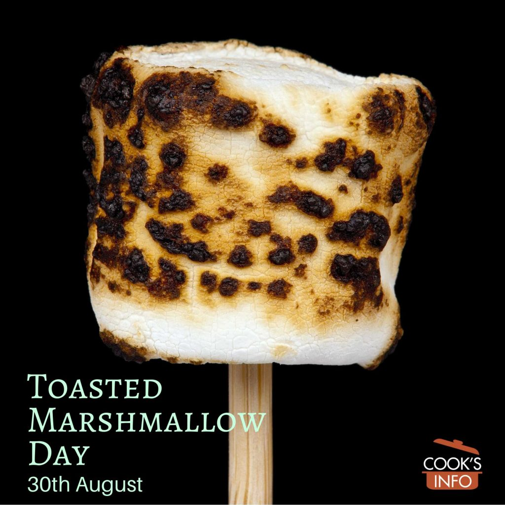A toasted marshmallow on a stick