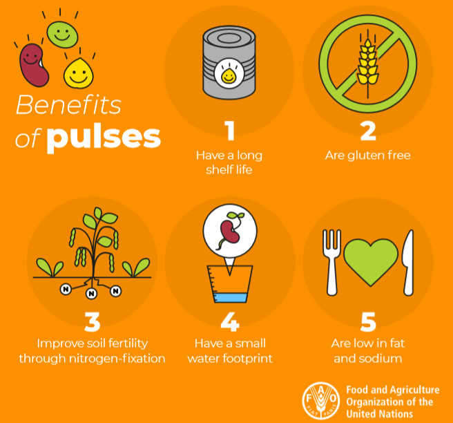 Benefits of pulses graphic