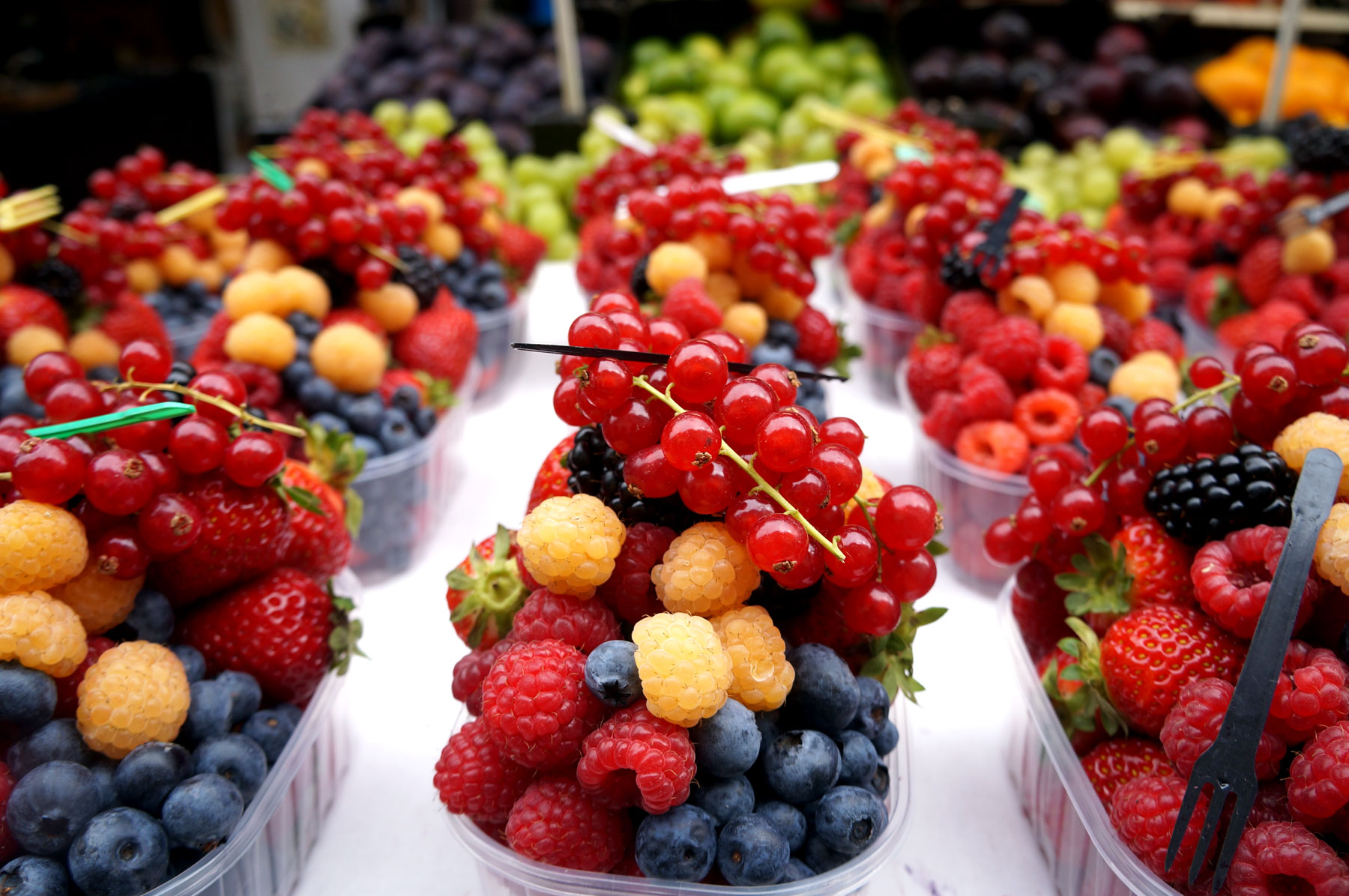 Baskets of assorted berries