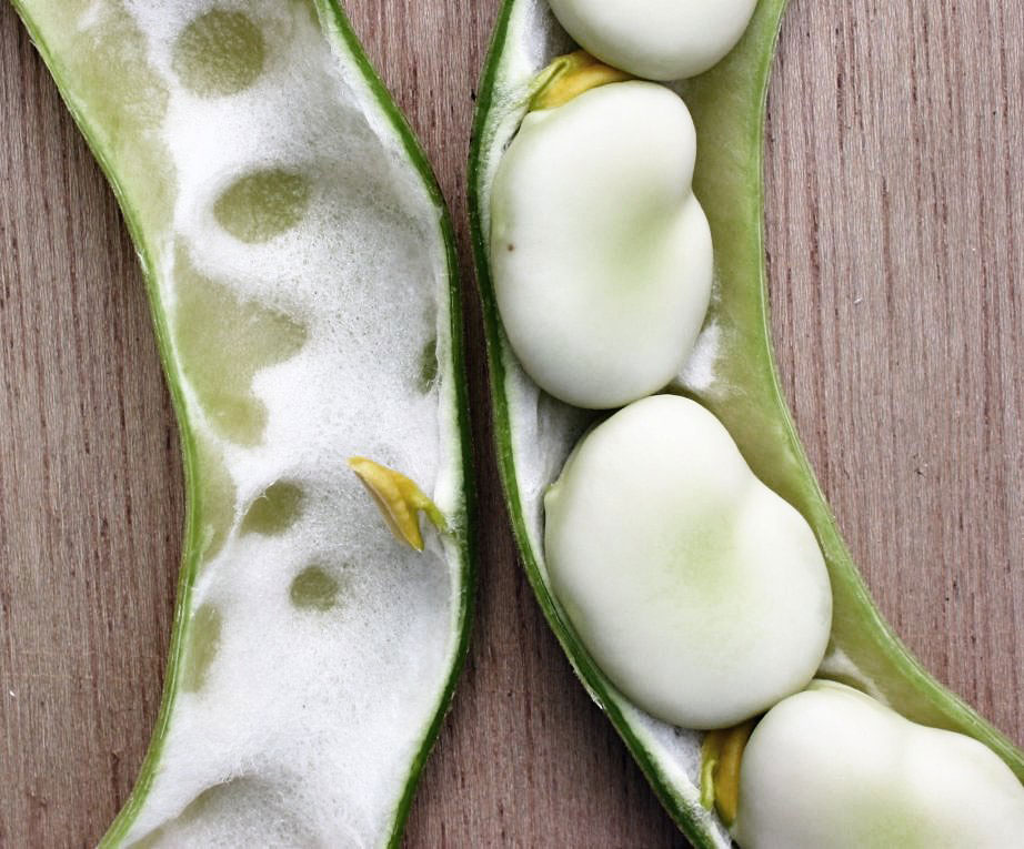 Broad beans in a pod