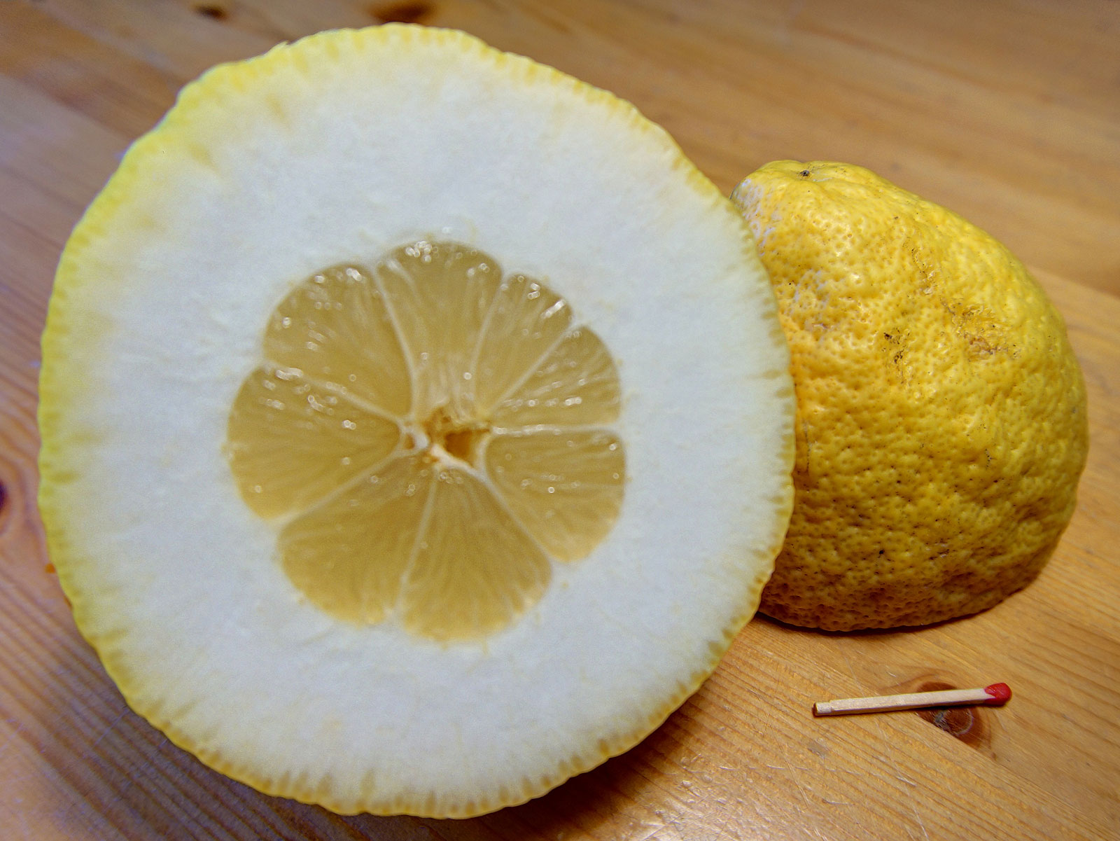 Citron cross-section