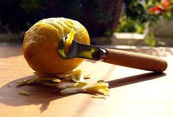 Citrus Zester