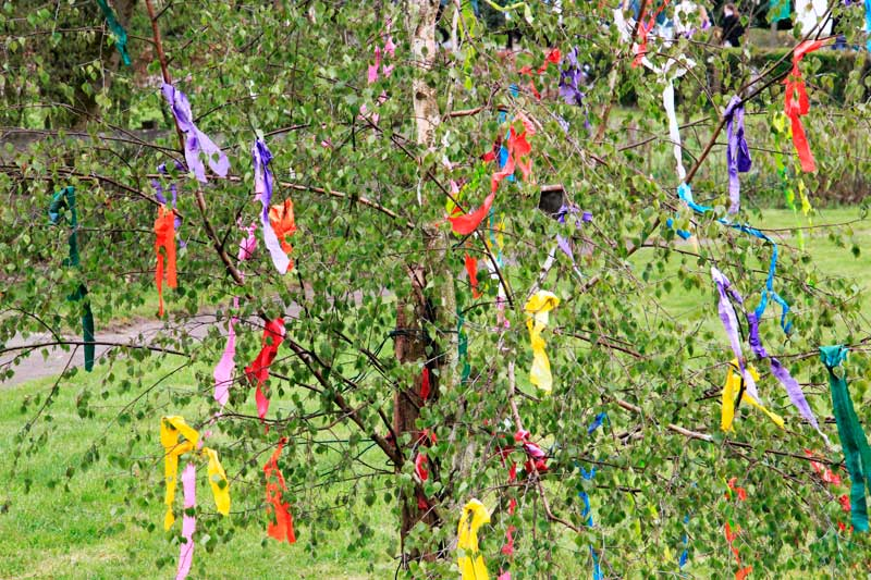 Tree decorated for May Day