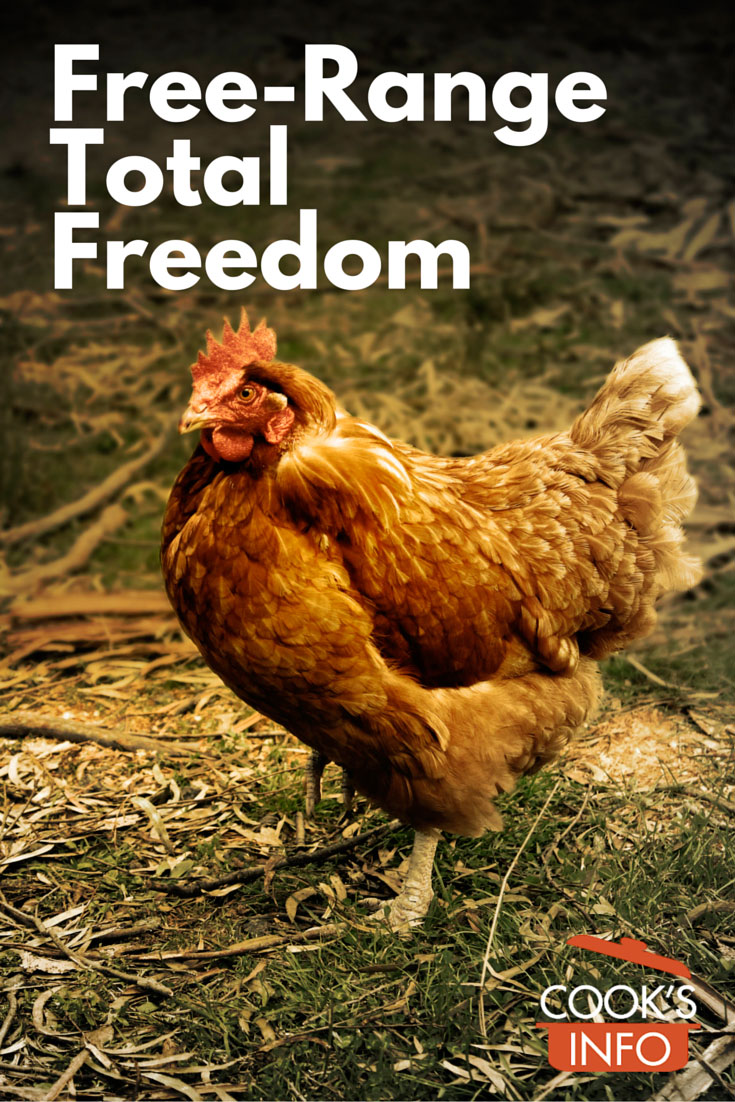 Free-Range Total Freedom Chickens