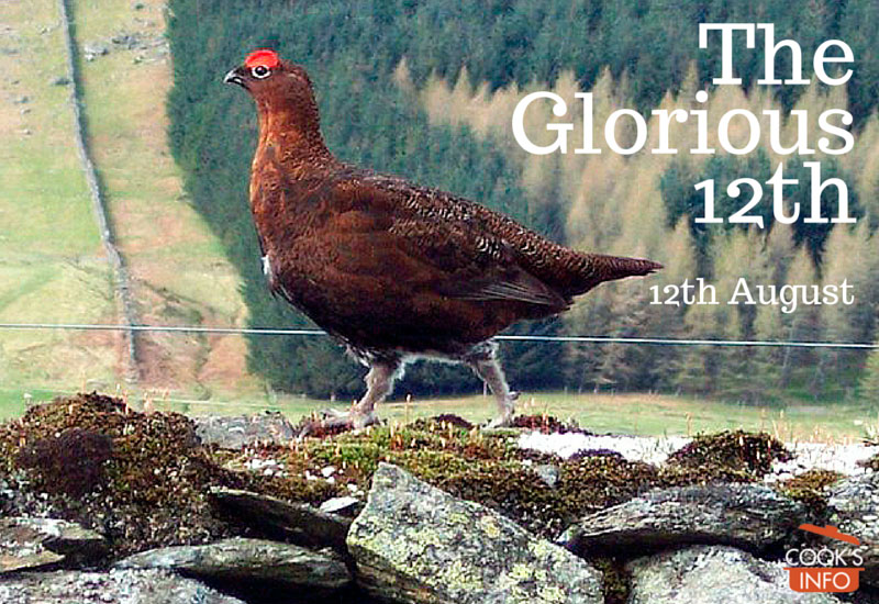 Red Grouse (Lagopus lagopus scoticus)