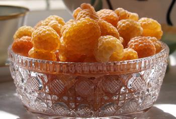 Gold Raspberries