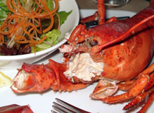 Cooked lobster with claws removed