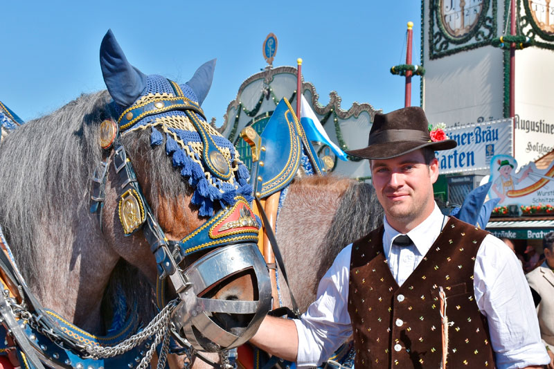 Horse pulling beer cart in Bavaria