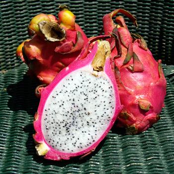 Pitahaya Fruit