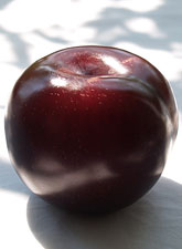 Red Plums (Code 4042)