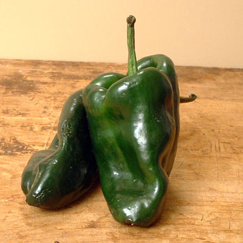 Poblano Chile Pepper