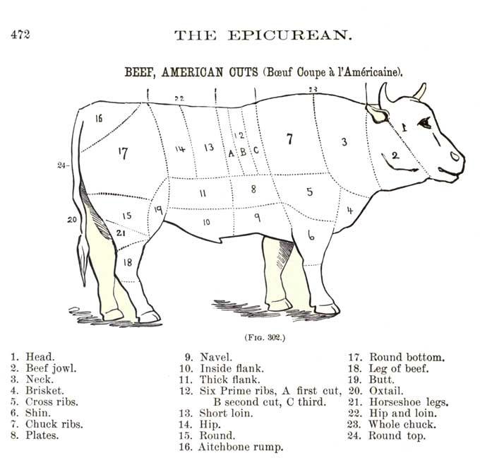 Chef Charles Ranhofer's beet cuts chart