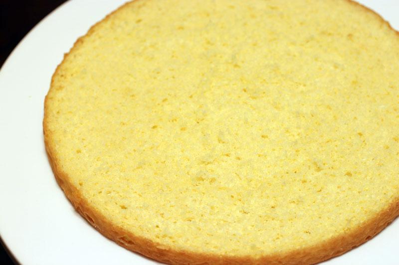 Sponge cake layer