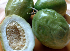 Green Tamarillos