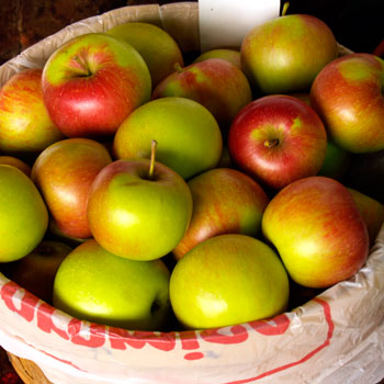 Wealthy Apples