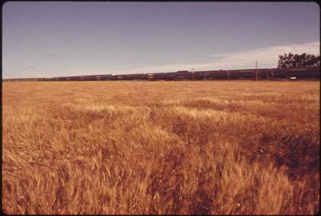 Kansas Wheat Field, 1974. U.S. National Archives 412-DA-13551. O'Rear, Charles, 1941-