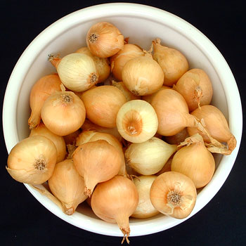 Yellow Pearl Onions